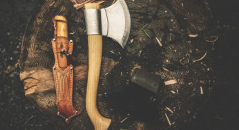 Axe Handle Wood Types: Impact Bending Data | Buy Axes Online